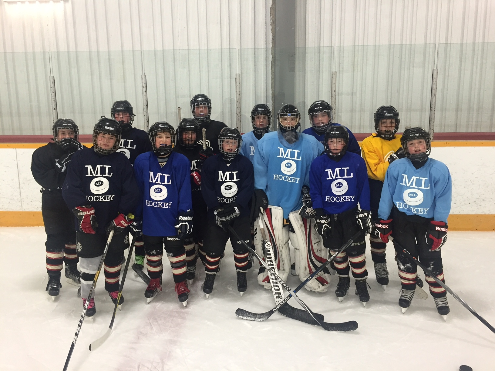 ML Hockey School